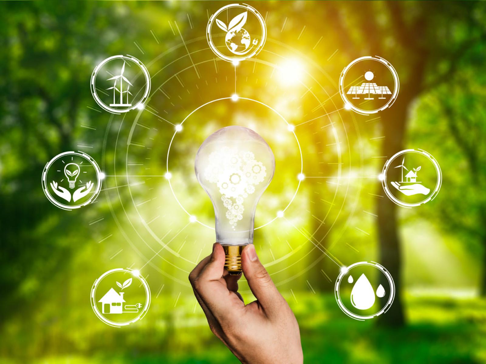 AGGIORNAMENTO PERMANENTEVIA WEB  Sustainability and environment: business strategies in comparison